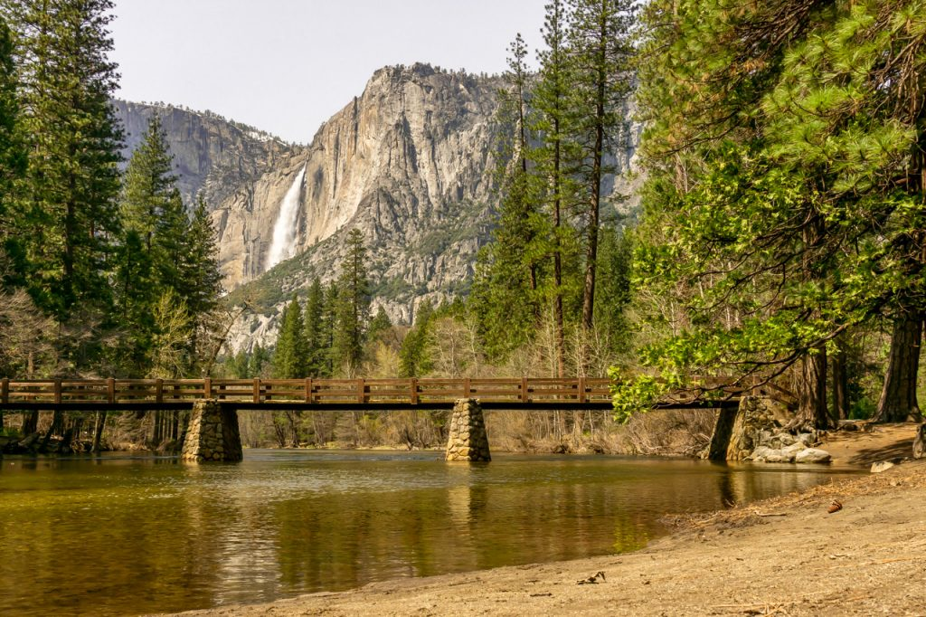Merced River with Yosemite Falls in the background